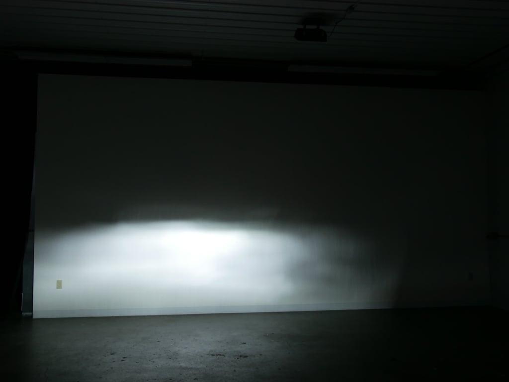 P1130448-bulb-12