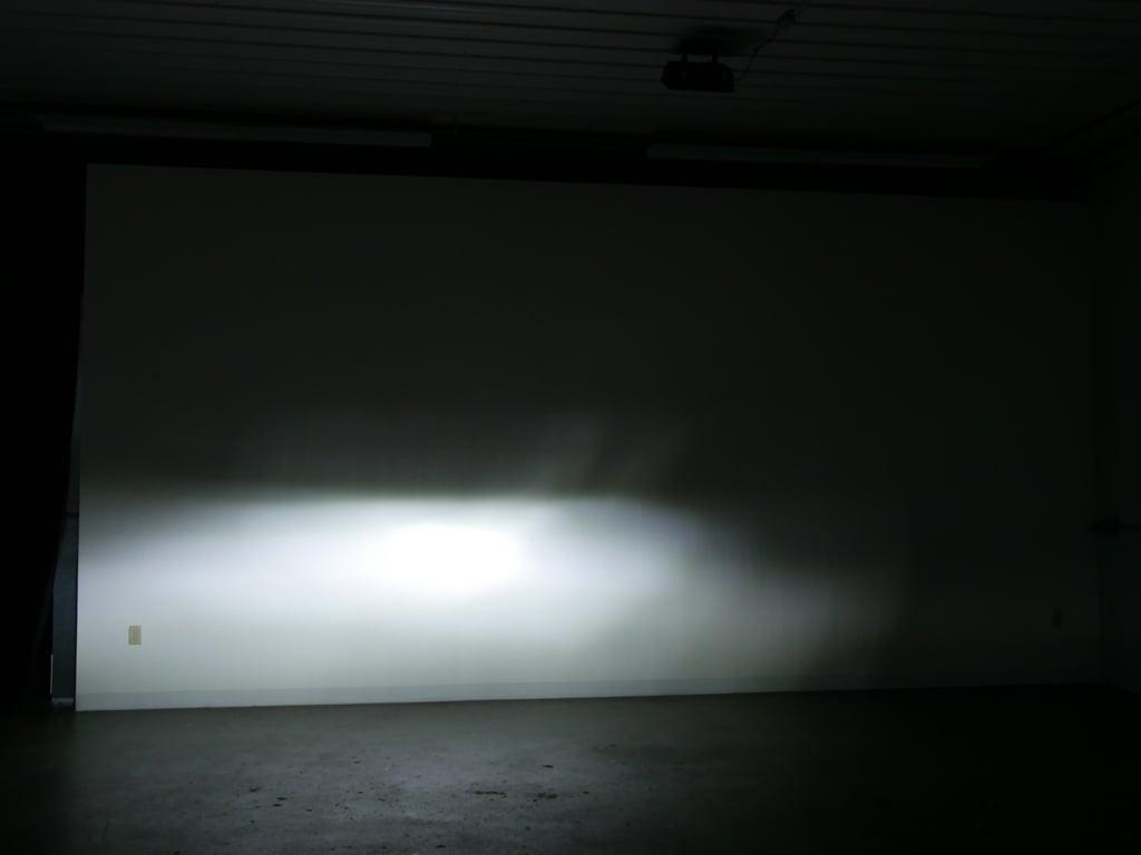 P1130450-bulb-13