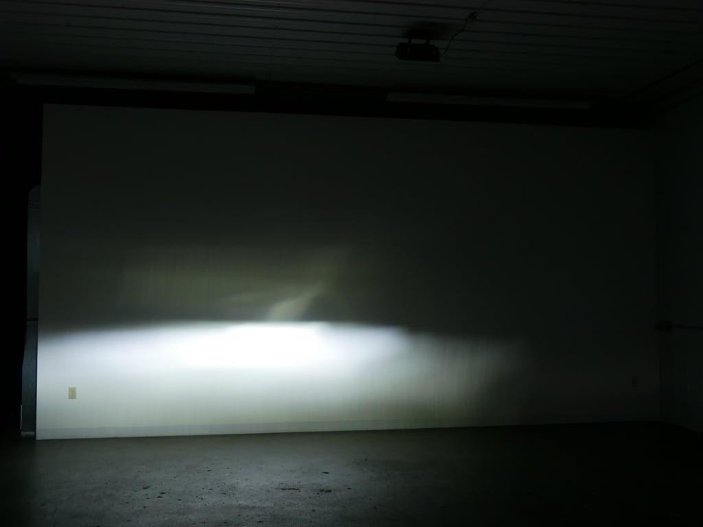P1130454-bulb-16